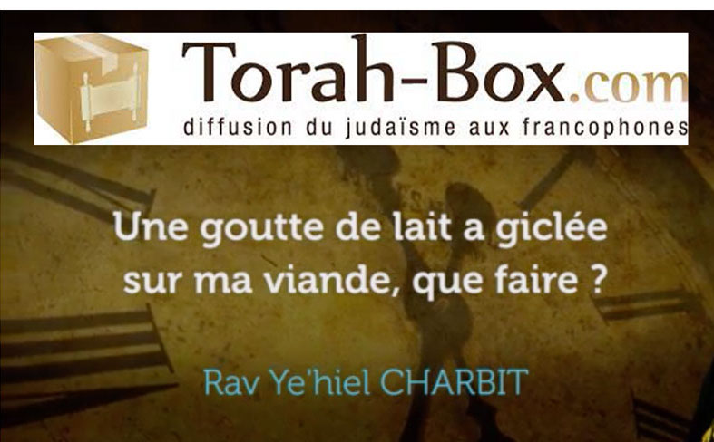 Le Grand Rabbin de France préfère devenir scientologue en voyant une video de Thora Box